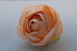 Голова пиона персиковый